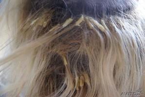 Колтуны, наращивание волос