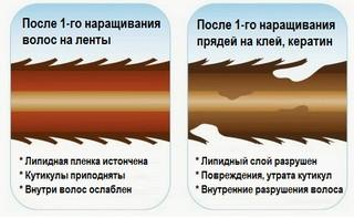Изменение структуры волос после наращивания
